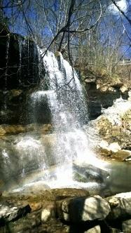 Rock Glen Conservation Area. Photo Credit: Jenny Ward